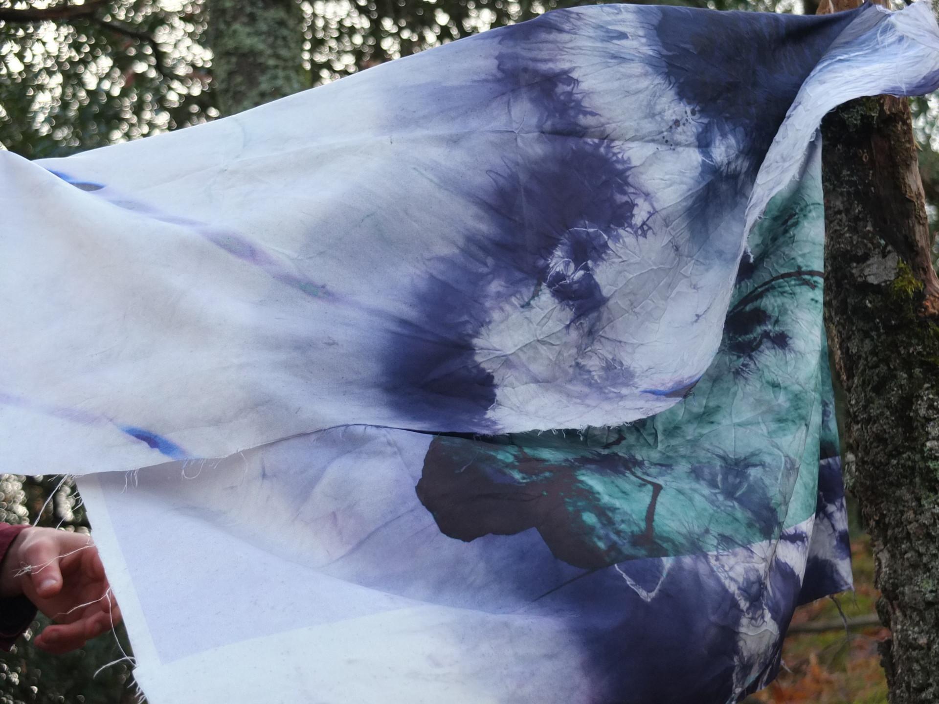 sarah gissinger la plasticité du vivant — #1
